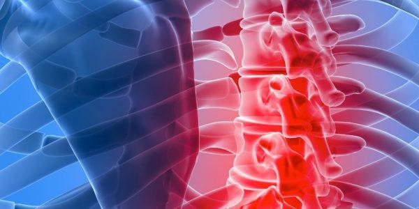 premium-health-musculoskeletal-injury